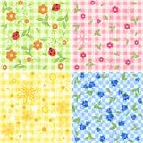 Collection color seamless. Stock Photos