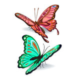 Collection of colorful butterflies Stock Photos
