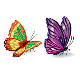 Collection of colorful butterflies Royalty Free Stock Images