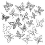 Collection of colorful butterflies Royalty Free Stock Photo
