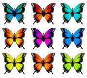 Collection of colorful butterflies Royalty Free Stock Photos
