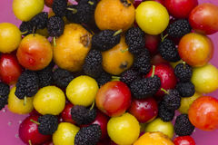 Collection of colorful, fresh fruit Stock Photos