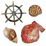 Watercolor set of sea life. Nautical elements Stock Images