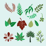 Collection of colorful leaves - Illustration Royalty Free Stock Photo