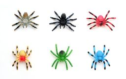 Collection of Colorful Plastic Toy Spiders. Colorful Plastic Toy Spiders on White Background Royalty Free Stock Image