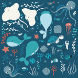 Collection of colorful sea and ocean animals, whale, octopus, stingray, jellyfish, turtle, coral Royalty Free Stock Photography