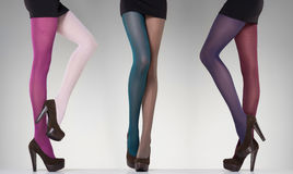Collection of colorful stockings on sexy woman legs on grey Royalty Free Stock Photo