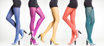 Collection of colorful stockings on sexy woman legs on grey. Collection of colorful stockings on sexy woman legs isolated on grey Royalty Free Stock Image