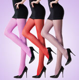 Collection of colorful stockings on sexy woman legs on purple. Background Royalty Free Stock Image