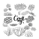 Collection of  coral reef  elements. Collection of  ocean plants and coral reef  elements drawn in line art style  on white. Coloring page design Royalty Free Stock Photography