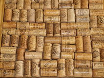 A collection of corks from wine bottles. Czech Republic Stock Image