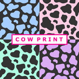 Collection of cow prints Royalty Free Stock Images
