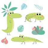 Collection with crocodiles and plants Stock Images