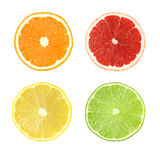 Collection of cut citrus fruits isolated with clipping path Stock Image