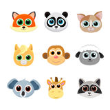 Collection of cute animal faces including fox, panda, cat, pony, monkey, giraffe, koala, sheep and raccoon. Royalty Free Stock Images