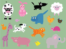 Collection of cute animals Royalty Free Stock Images
