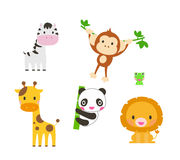 Collection of cute animals. Elephant,lion, zebra,giraffe, panda, monkey. Stock Image