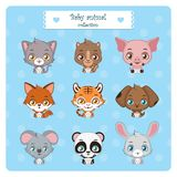 Collection of cute baby animals. Collection of cute little baby animals royalty free illustration