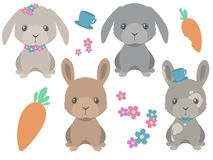 Collection of cute cartoon style brown and gray easter bunny with carrots and spring flowers vector stock illustration