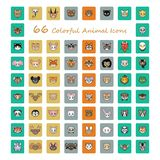 Collection of 66 colorful animal head icons royalty free illustration