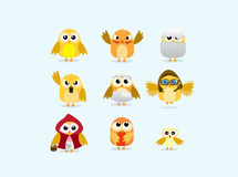 Set of cute chicks. Collection of cute, colorful chickens illustrations Stock Photos