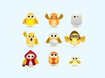 Set of cute chicks Stock Photos