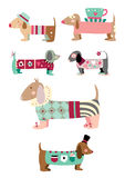 Collection of cute dogs. Cute set of sausage dogs (dachsund) with funky clothes stock illustration
