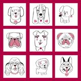 Collection with cute dogs set in sketch cartoon style. Vector collection with cute dogs set in sketch cartoon style doodle illustration Stock Image