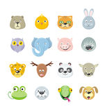 Collection of Cute Face Animal Royalty Free Stock Image