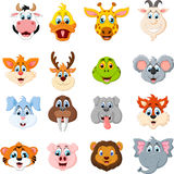 Collection of cute face animal Royalty Free Stock Photo