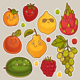 Collection of Cute Fruit Stickers Royalty Free Stock Photo