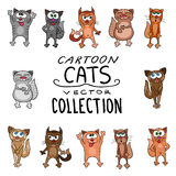 Collection of cute funny cats vector set. Stock Photography
