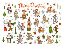 Collection of cute funny christmas and happy new year 2018 greeting congratulating dogs. Wearing winter santa claus hats scarfs Stock Image
