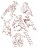 A collection of cute hand-drawn bird doodles Royalty Free Stock Images