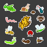 Collection of cute insects cartoon. Stock Photography