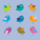 Collection of cute multi-colored birds on a blue background Stock Photography