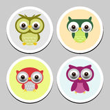 Collection of cute owls Royalty Free Stock Photo