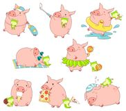 Collection of cute pigs Royalty Free Stock Photography