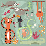 Collection of cute rain forest animals, tiger, snake, sloth, mon Royalty Free Stock Photo