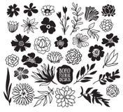 Collection décorative noire de plantes et de fleurs de Boho Image libre de droits
