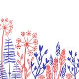 Collection décorative rustique de plantes et de fleurs Éléments tirés par la main de conception de vecteur de vintage Images stock