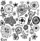 Collection d'élément d'usine Détails des usines de l'Amérique du Nord illustration stock