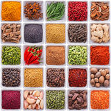 Collection d'épices et d'herbes dans des cuvettes en céramique Images stock
