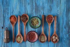 Collection d'épices sur les cuillères en bois Image stock
