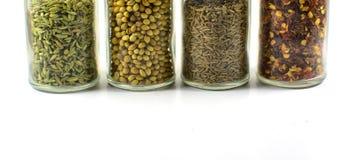 Collection d'épices utilisées en nourritures indiennes Photos stock
