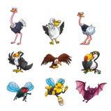 Collection d'animal de vol Photographie stock