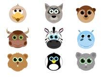 Collection d'animal mignon de visage Photo stock