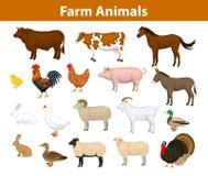 Collection d'animaux de ferme Photo libre de droits