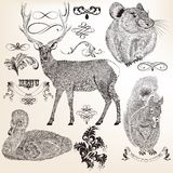 Collection d'animaux et de flourishes de vecteur pour la conception Image stock