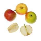 Collection d'Apple. Image libre de droits